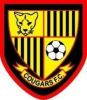 Harold Wood Cougars YFC _ web