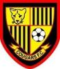 Harold Wood Cougars YFC _ web