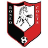 Roneo Colts YFC _ web