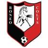 Roneo Colts YFC _ web